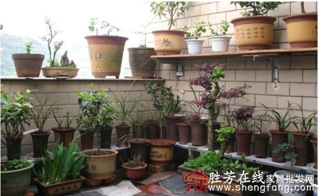 废旧木条自制花架图片
