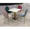 添隆高端钛金餐桌椅批发 复古式餐桌椅 主题餐桌椅 转印餐桌椅 钢木家具 快餐桌椅 休闲家具 会所家具 酒店家具 添隆家具