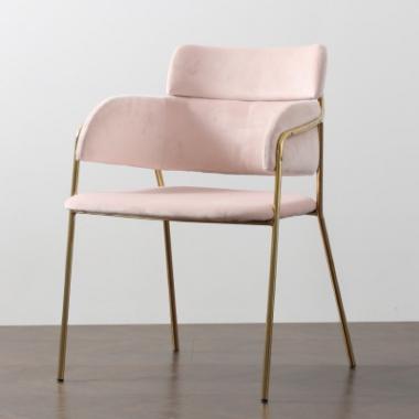 北欧铁艺轻奢风ins网红家用靠背绒布金色餐椅休闲化妆椅洽谈椅子标典家具