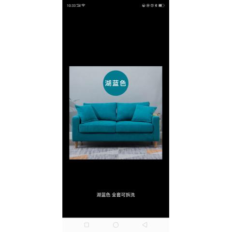 胜芳布艺沙发  大双人沙发 小户型客厅沙发   榉木腿沙发 加厚海绵坐垫